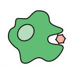 Immunobites macrophage logo